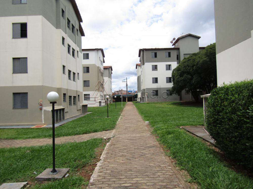 Alugar Apartamento / Padrão em Franca. apenas R$ 400,00