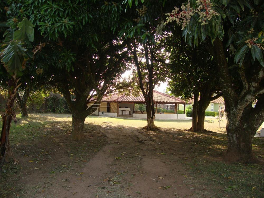 Comprar Casa / Chácara em Franca R$ 3.000.000,00 - Foto 23