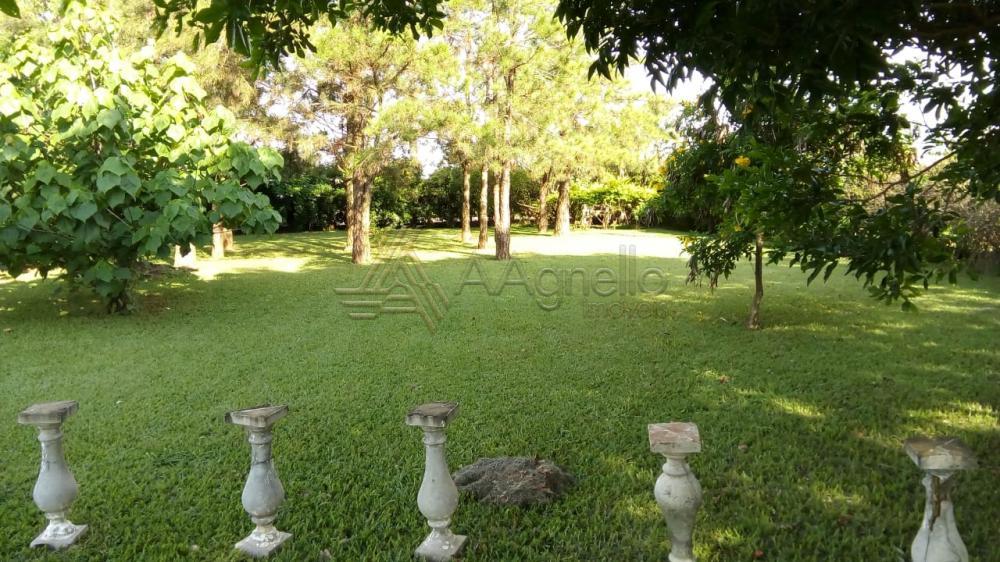 Comprar Casa / Chácara em Franca apenas R$ 700.000,00 - Foto 8