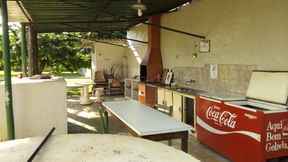 Comprar Casa / Chácara em Franca apenas R$ 700.000,00 - Foto 5