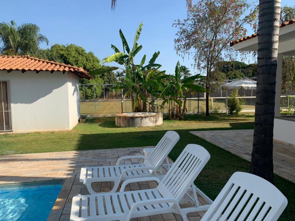 Comprar Casa / Chácara em Franca apenas R$ 730.000,00 - Foto 7