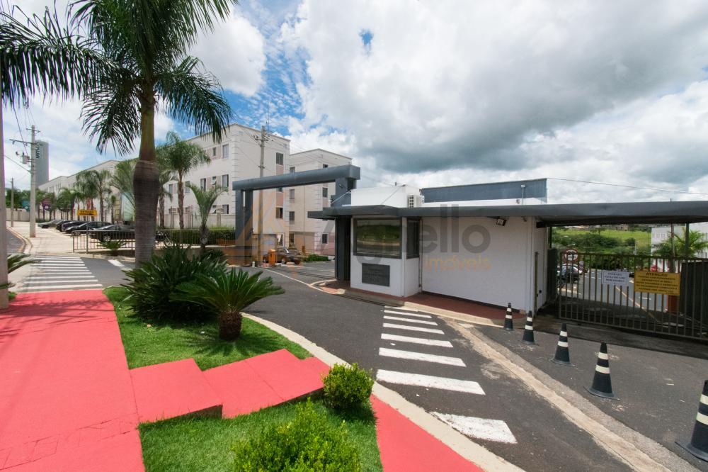 Alugar Apartamento / Padrão em Franca apenas R$ 500,00 - Foto 1