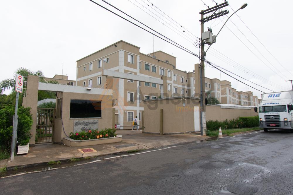 Alugar Apartamento / Padrão em Franca apenas R$ 750,00 - Foto 1