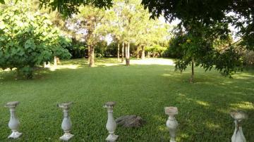 Comprar Rural / Chácara em Franca apenas R$ 700.000,00 - Foto 8