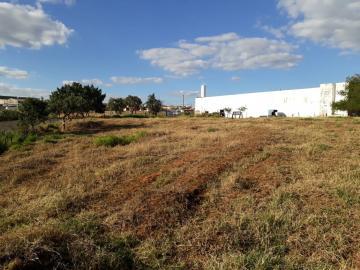 Alugar Terreno / Em bairro em Restinga. apenas R$ 480.000,00