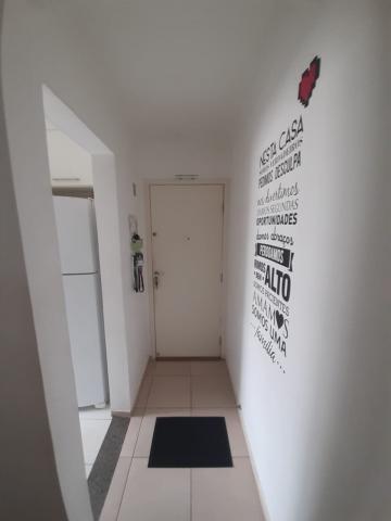 Alugar Apartamento / Padrão em Franca. apenas R$ 145.000,00
